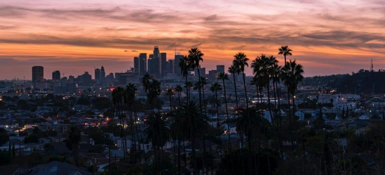 a panoramic view of one of Southern California neighborhoods for pet owners during the night